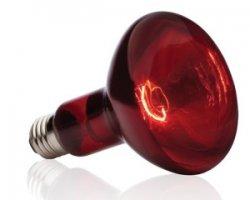 Обогрев инфракрасными лампами
